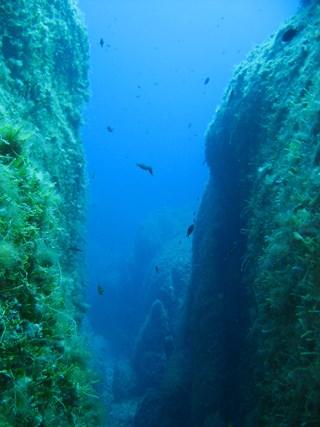 DivingMuraveraCostaReiHotelDomuIncantada10.jpg